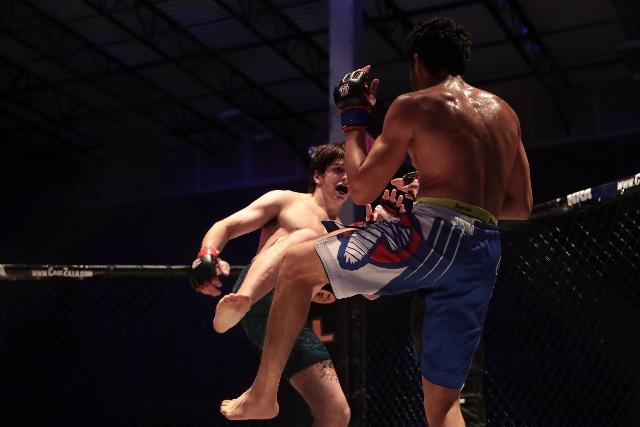 Thai Boxing / Muay Thai knee