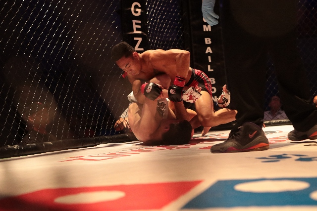 Grappling in CageZilla fight / Wylde Style